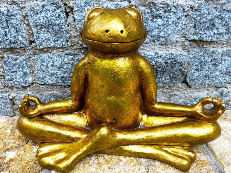 Innerscapes Meditation frog